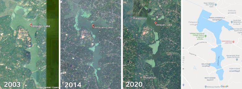 Wasserpflanzen ueberwuchern den Vellayani See