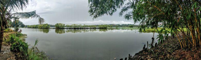 Ein Teilvom Vellayani See wo die Wasserplanzen schon entfernt wurden (nahe kanthari Campus)