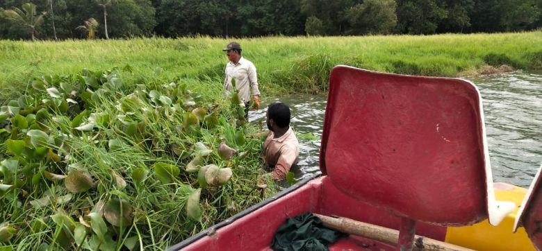 Reinigungs arbeiten am Vellayani See